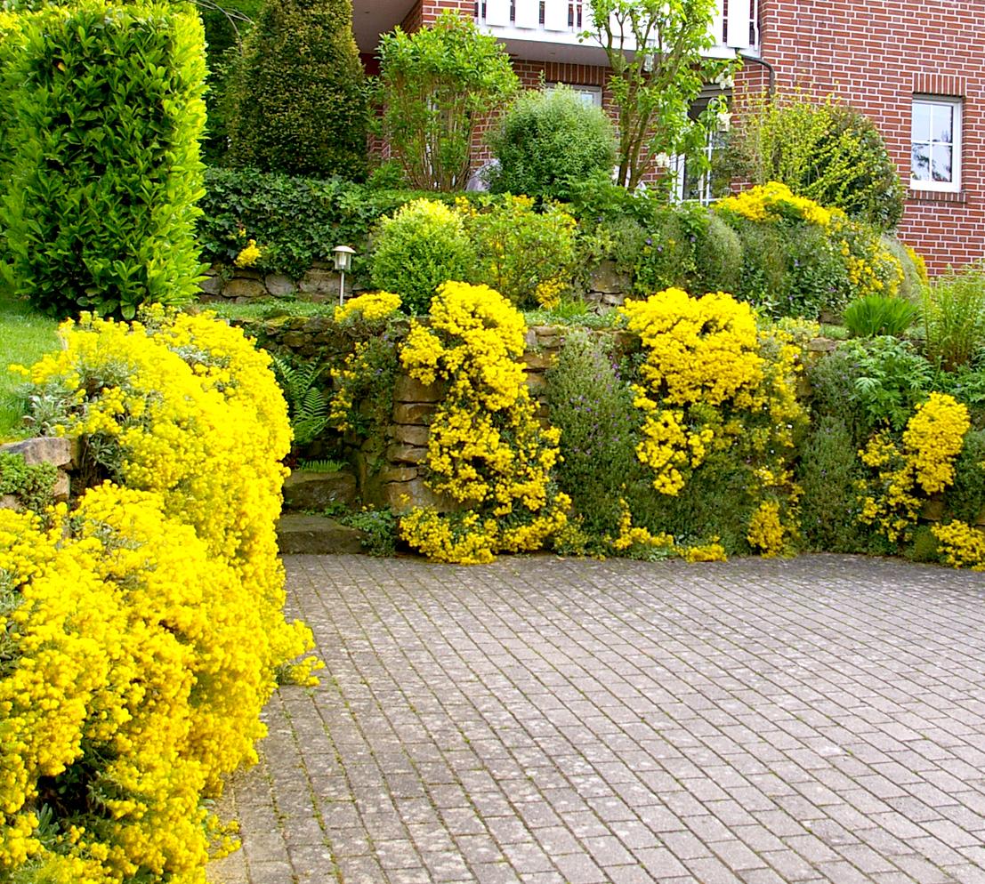 NGG Niestegge Gartengestaltung Gartengestaltung